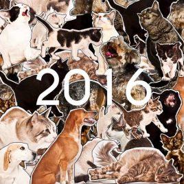Calendario SOS Animalia 2016